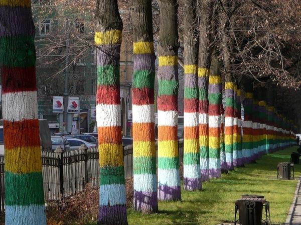 Вот и такая декоративная побелка встречается, фото с сайта kucha.d3.ru, автор Akula