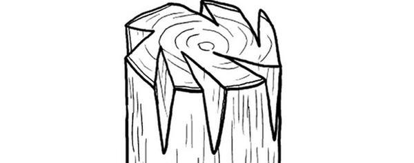 Прививка в периферические полурасщепы, фото с сайта fictionbook.ru, автор Галина Серикова