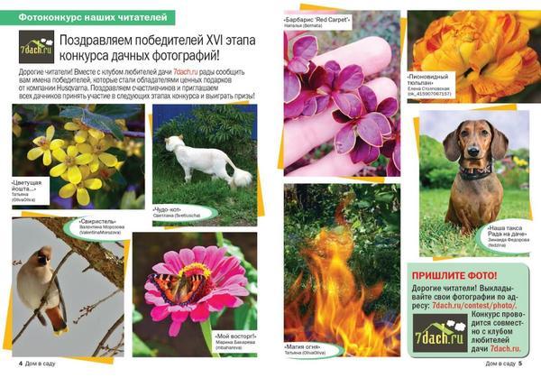 Фото победителей 16 этапа Конкурса дачных фотографий в журнале Дом в саду