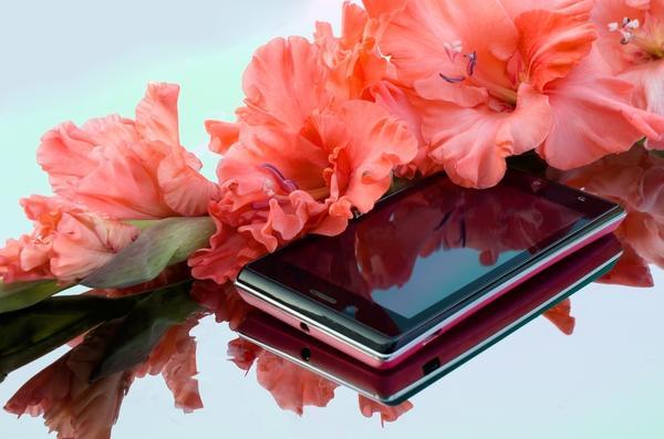Давайте поделимся красотой этих грациозных цветов!