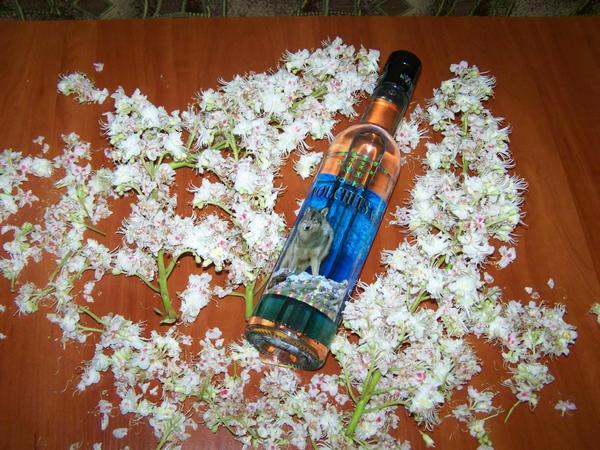 А как вы используете водку в садово-огородном деле?