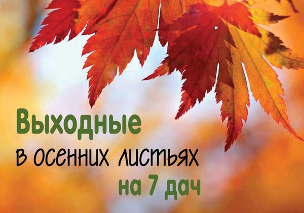 Выходные в осенних листьях