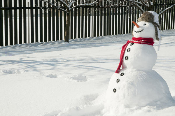 Снеговик может быть веселым или печальным, гордым и самодовольным или скромным и задумчивым