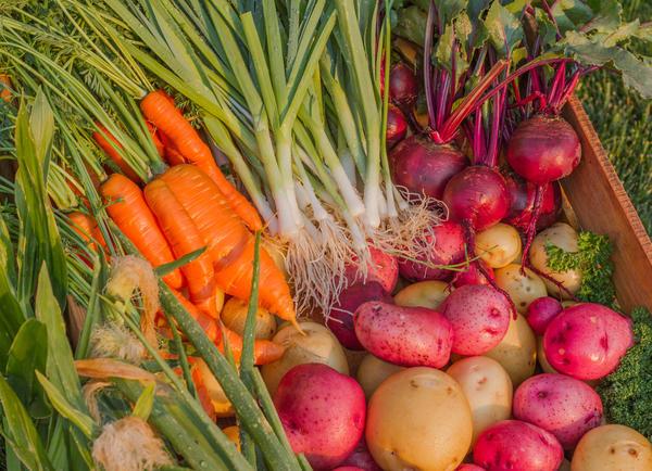 Кому-то моркови нужно больше - а кому-то свеклы