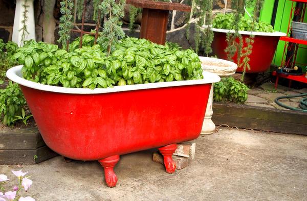 Клумба в ванне