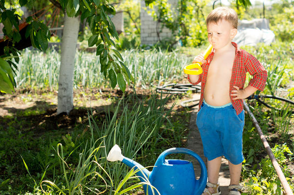 Маленький помощник в огороде