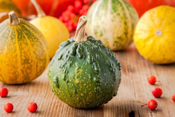 По большей части плоды этих растений несъедобны и выращиваются исключительно как украшение