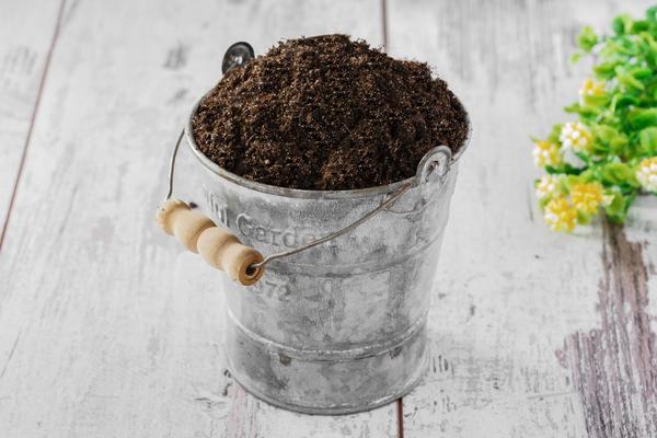 Нужно ли прокаливать землю для комнатных растений