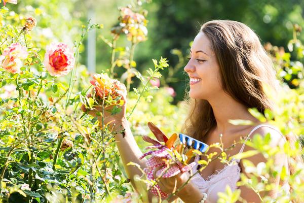 Среди повседневных забот находите время радоваться тому, что вас окружает