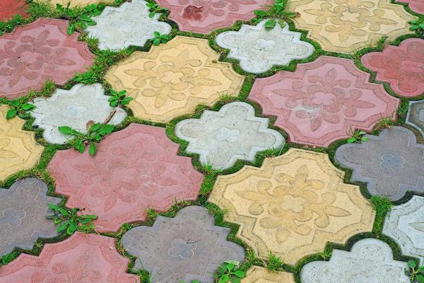 Плитка - один из самых популярных материалов для устройства и отделки дорожек