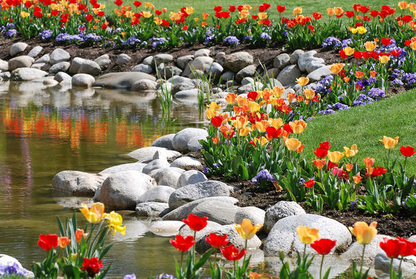 Когда цветники обрамляют настоящий водоем, то выигрывают и цветы, и вода