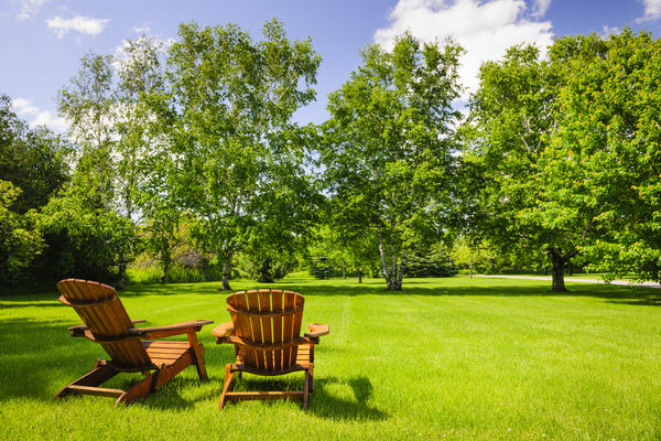В зависимости от целей и задач выберите подходящий для вас вариант газона