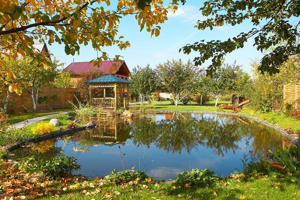 Дачный домик и водоем