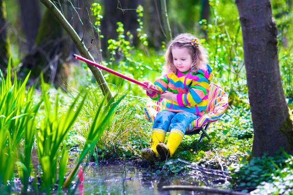 Пруд, пусть и садовый – это экосистема