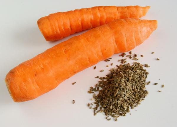 Морковь и ее семена