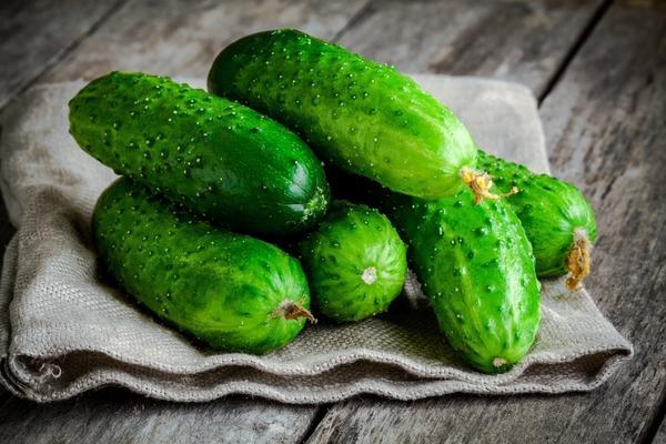 Огурец - прекрасный гарнир и незаменимый компонент в салатах