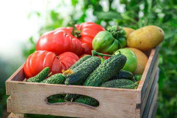 Любые спелые плоды, выделяющие этилен, хранить вместе с огурцами нельзя