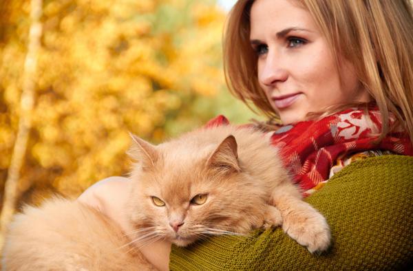 По тому, какое домашнее животное выбирает человек, можно многое рассказать о его характере