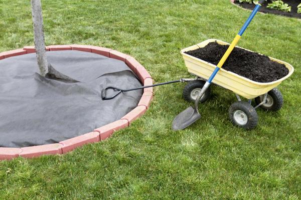 Для работы на мягкой почве лучше приобрести двухколесную тачку или тачку с четырьмя колесами