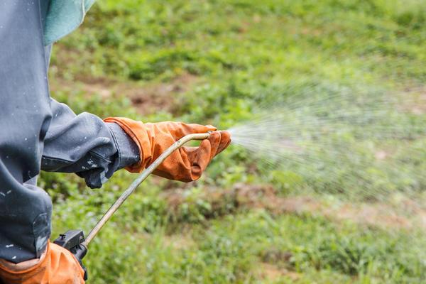 С помощью гербицида можно полностью очистить участок даже от трудно истребимых сорняков