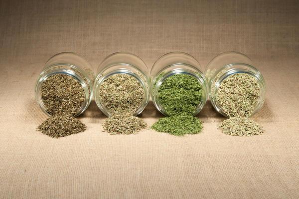 Сушить зелень можно на открытом воздухе или с помощью бытовых приборов