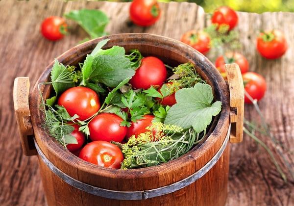 Всякая хозяйка имеет свой рецепт соленых помидоров