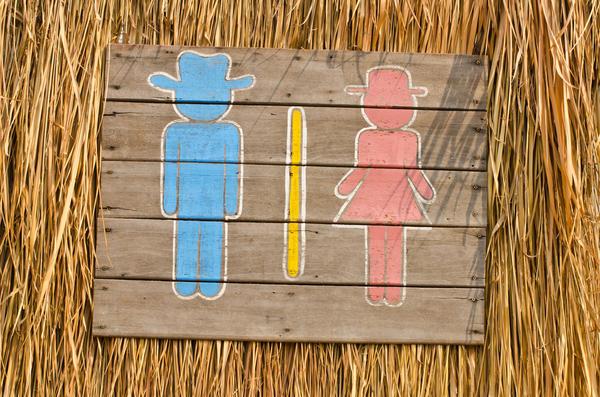 Туалет в загородном доме - самое необходимое удобство