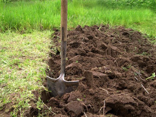 Какой бы метод вы не выбрали - не разбивайте земляные комья