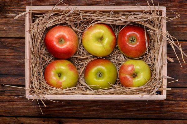 Собранный урожай сразу перебирайте и закладывайте на хранение