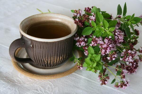 Чай с душицей очень полезен