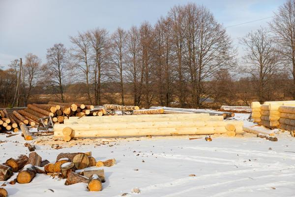 Январь-март. Рубка и монтаж деревянного сруба.