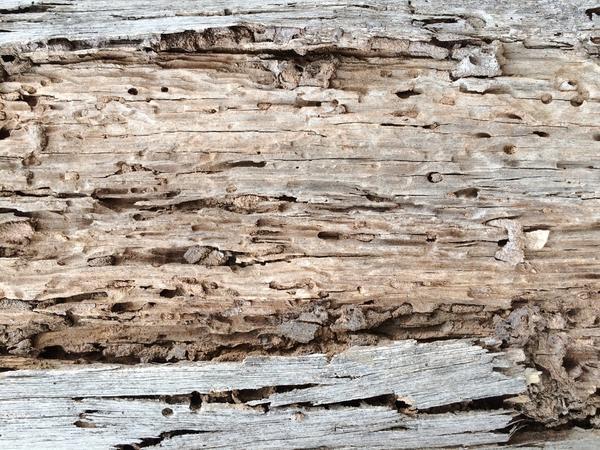 Старые доски как отделочный материал