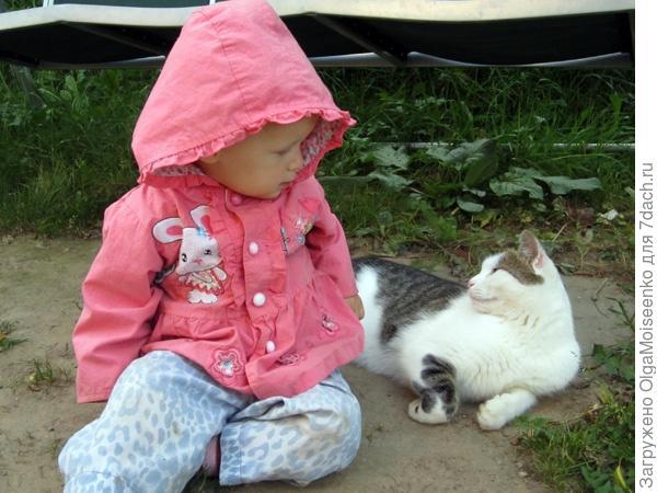 кот и девочка переглядываются