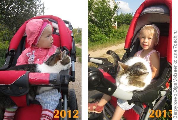 Поля и Тима в коляске