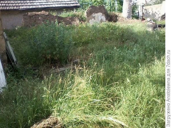 А вот это - вид со стороны соседей. Именно здесь, когда-то стоял старый дом. Видны его развалины.