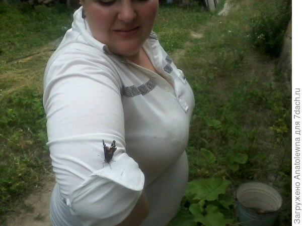 Бабочка облюбовала рукав невестки.