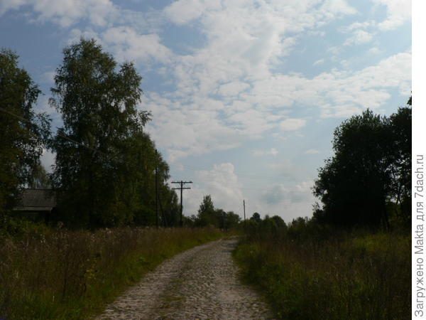 дорога на трассу