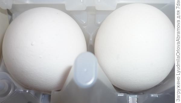 Яйцо и яичный желток