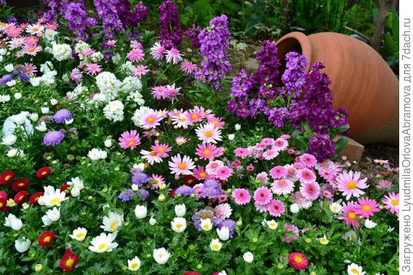 Чтобы Вас окружало море цветов!