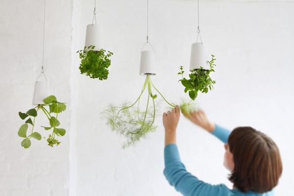 Подвесные конструкции Boskke Sky Planter. Фото с сайта http://www.designtherapy.it