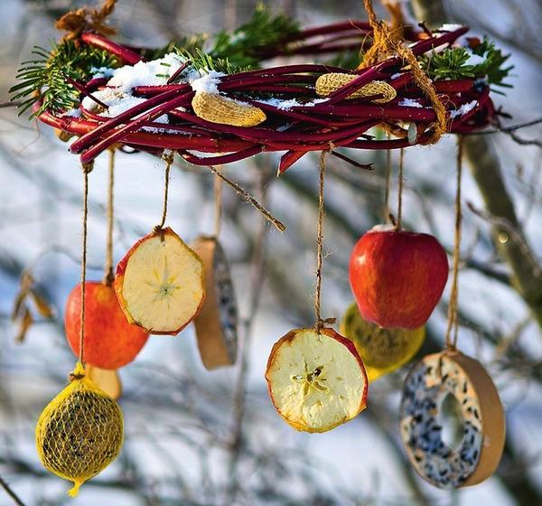 Порадуйте птиц зернами, ягодами и хлопьями!
