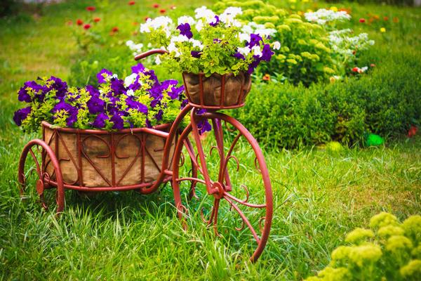 Один из способов украсить сад - необычный цветник
