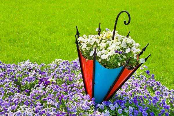 Сделайте новый необычный цветник!