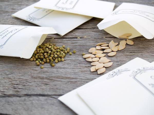 Семена лучше в бумажных или матерчатых мешочках