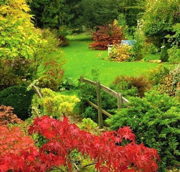 Красивый и ухоженный сад невозможно создать без грамотной обрезки