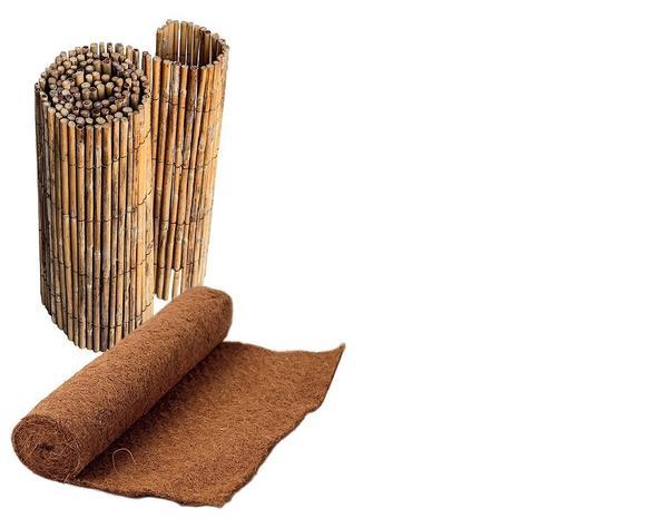 Побелите деревце, а затем оберните матами из бамбука, лозы либо несколькими слоями мешковины.