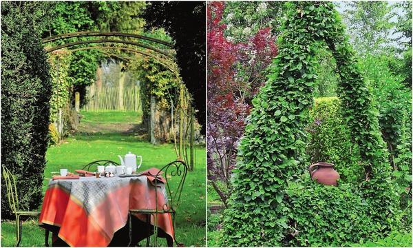 Слева: Ажурные кроны деревьев помогают создать легкое, безмятежное настроение. Справа: Лианы с плотной листвой дарят ощущение защищенности и стабильности.