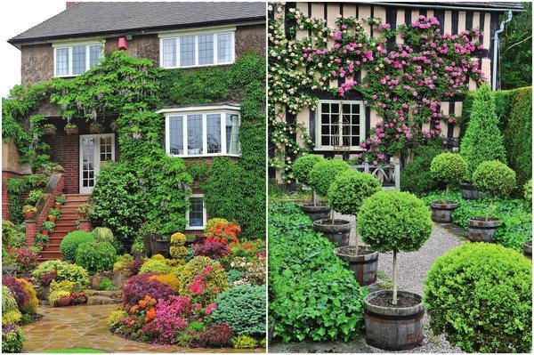 Слева: Увитое зеленью крыльцо послужит переходным элементом между домом и садом. Справа: Плетистые розы, опутавшие фасад, не только маскируют постройку, но и соединяют ее с садовым пространством.