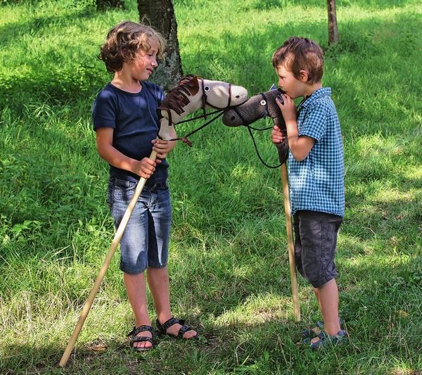 Если всадники дружат, то и их кони тоже.