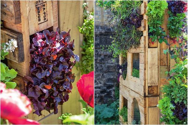 Слева: из поддона можно сделать вертикальный сад. Справа: вертикальный сад можно использовать как ширму.